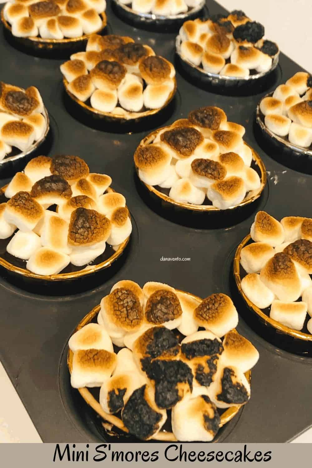 S'mores in pan with toasted marshmallows