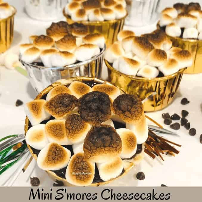 Best No-Bake Mini S'mores Cheesecakes