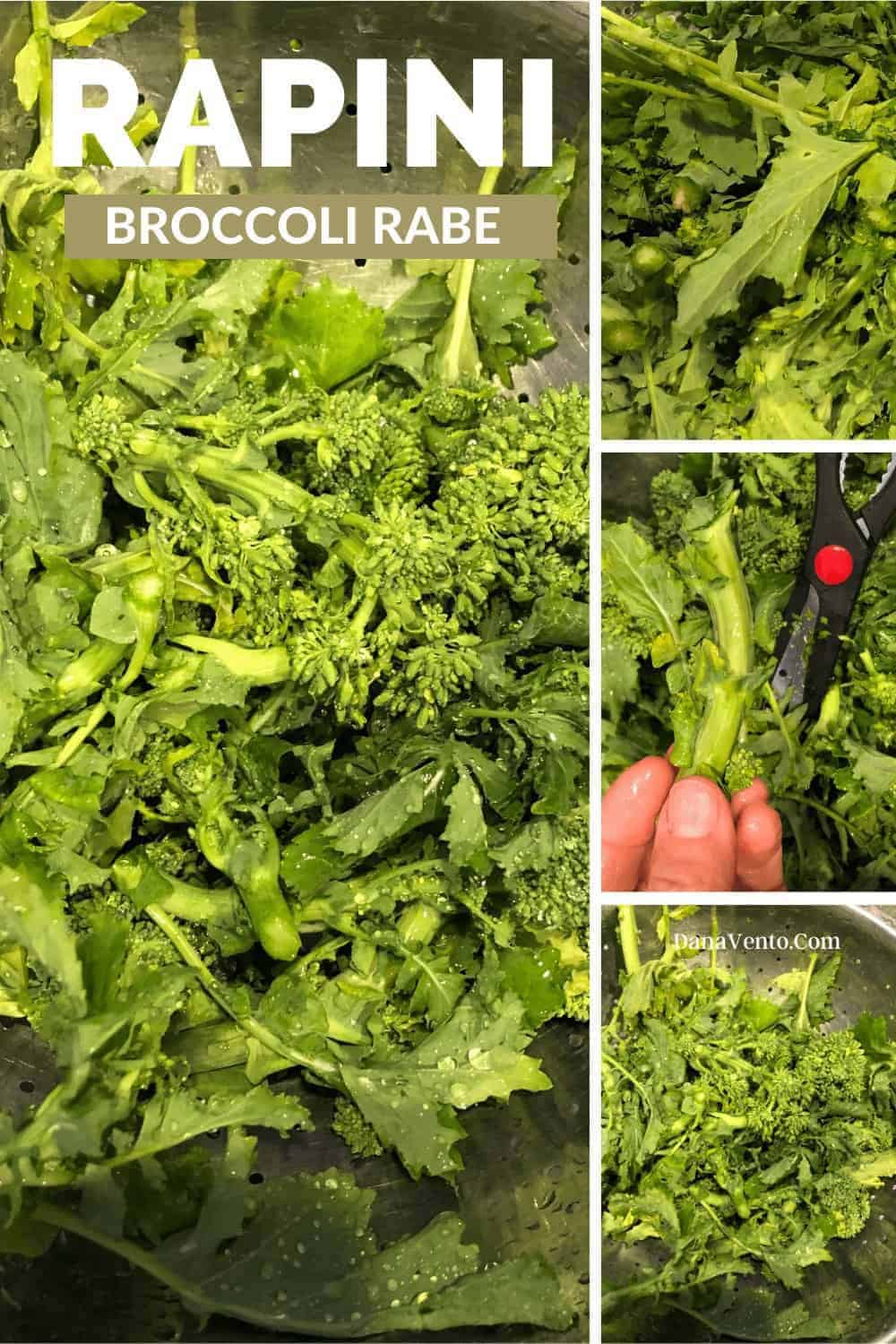 broccoli rabe being cleaned