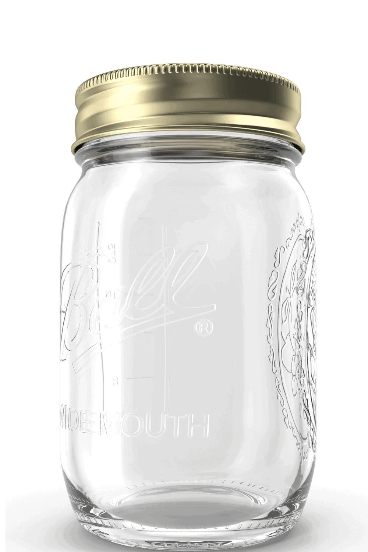 ball jar and plug