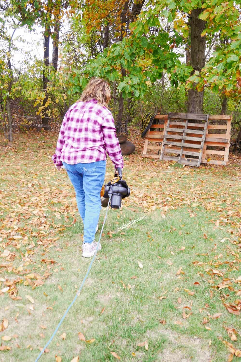 clearing out leaves in the yard