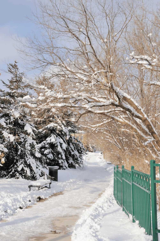 Michigan Winter Scene