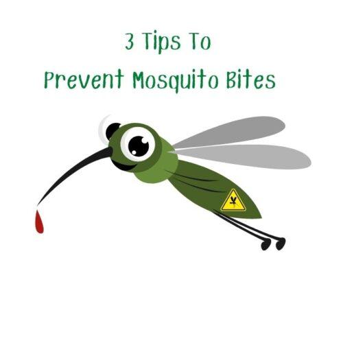 3 Ways To Prevent Mosquito Bites!