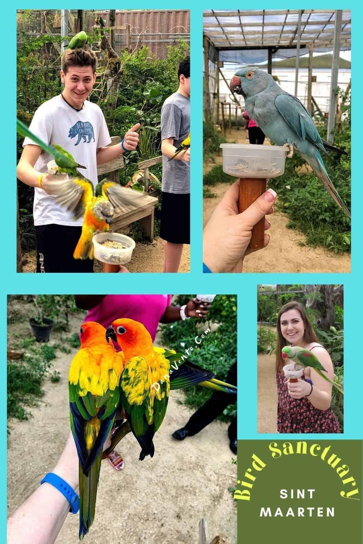 Sint Maarten Bird Sanctuary birds with us on head
