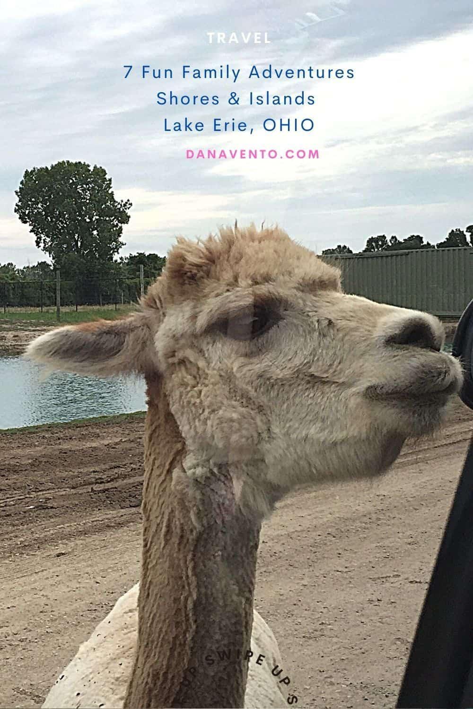 Lake Erie Shores and Islands African Wildlife Safari