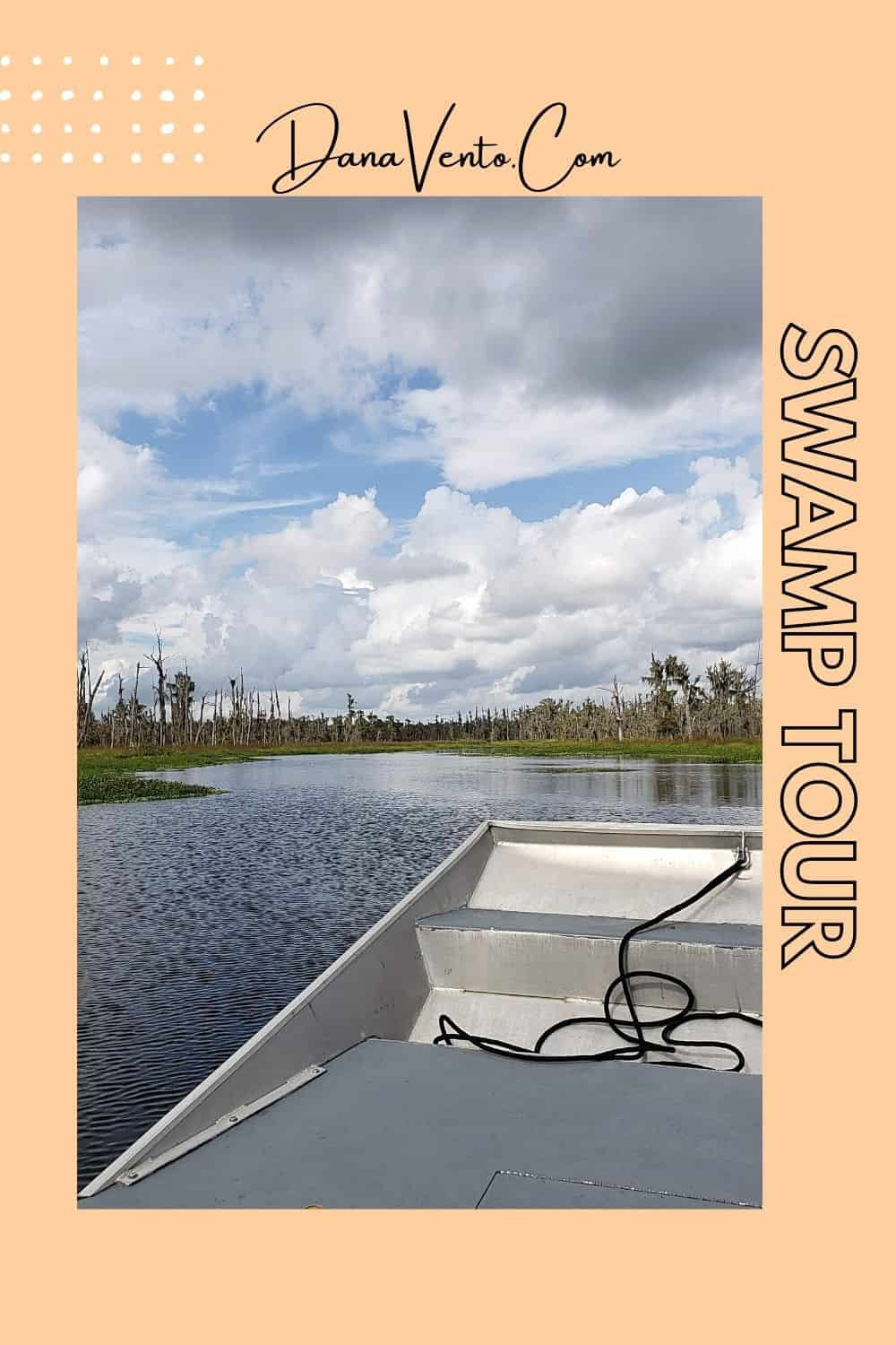 Swamp Tour in Bayou Country in Airboat