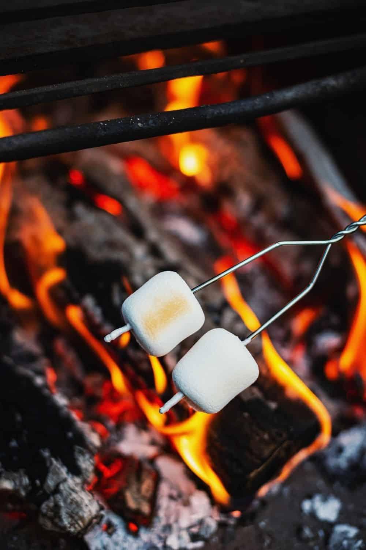 marshmallow roasting stick pro fire pit accessory