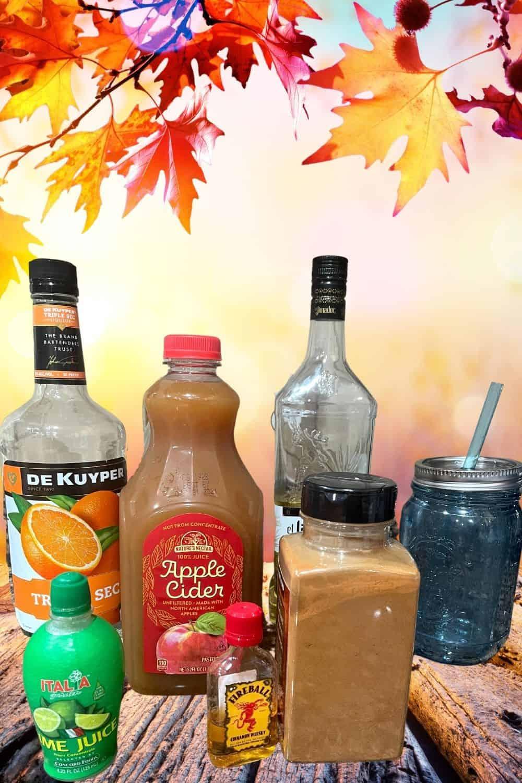 ingredients for Apple Cider Margarita